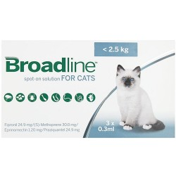 BROADLINE CAT