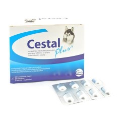 CESTAL PLUS CHEW X 1 TB